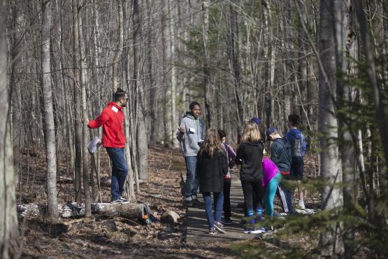 students in woods
