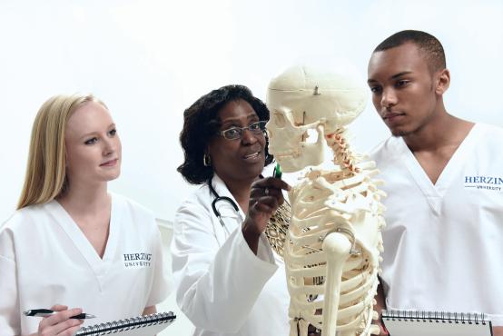 Herzing healthcare