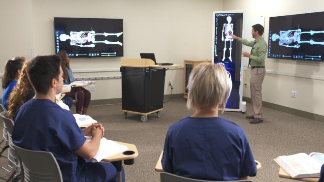 Bellin virtual cadaver