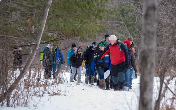 Northland ecology/wildlife